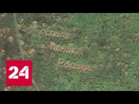 Господи, помоги России: крик души появился на одном из полей Подмосковья - Россия 24