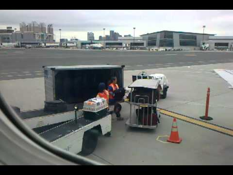 Pet transport via United Airlines (Continental) cargo in ...