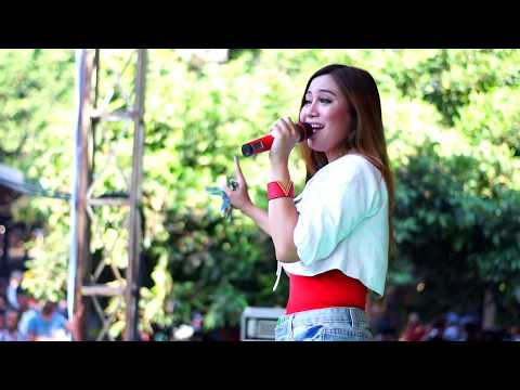 Download KARTONYONO MEDOT JANJI - EVIS RENATA - ROMANSA NGASEM WEDDING ANDI & NOVI Mp4 baru