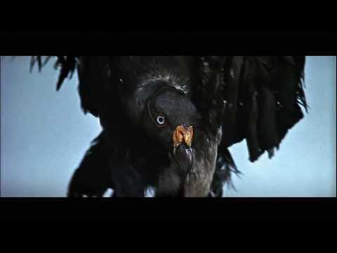 """Песни из кино и мультфильмов - Песня Из К/ф """"Золото Маккены"""""""