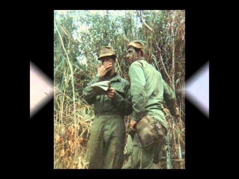 VIETNAM 1967-68: Co A 1st Bn. 69th Armor memoir