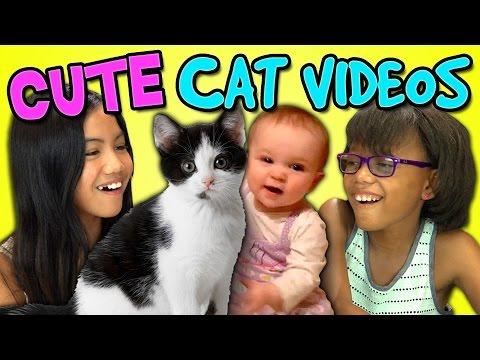 Kids React Bonus - Cute Cat Videos