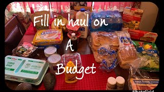 Fill In Grocery Haul on a budget family of 3
