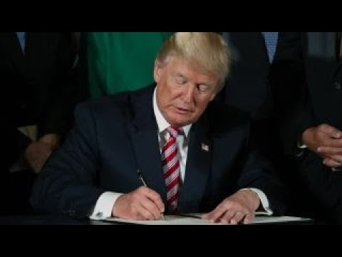 Trump works with Democrats over DACA