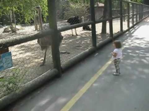 David e Federica allo Zoo