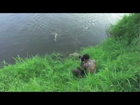 Thumbnail of video 'Photographer' Almost Eaten By Crocodile