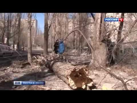 Vesti 31.03.2015 RTR. News from around the world