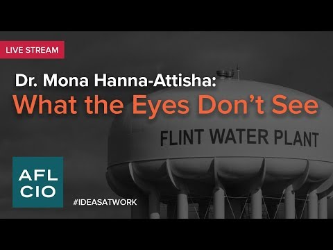 Dr. Mona Hanna-Attisha: What the Eyes Don't See
