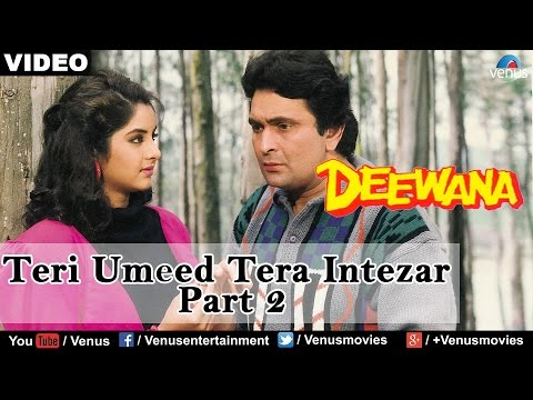 Teri Umeed Tera Intezar - Part 2 (Deewana)