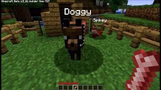 Minecraft, wolves, wolf, dog, collar, name, clothing, breeding, puppy, bones, backpack