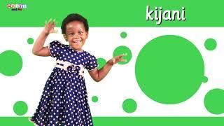 Nyimbo Bora za Akili and Me | Katuni za Elimu kwa Kiswahili
