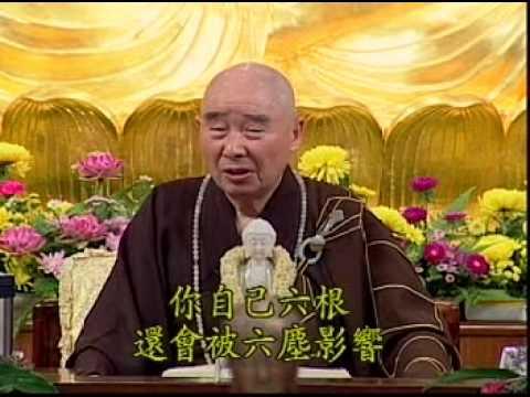 Kinh Vô Lượng Thọ (Giảng Lần Thứ 10, 1998) (Tập 264 - 278)