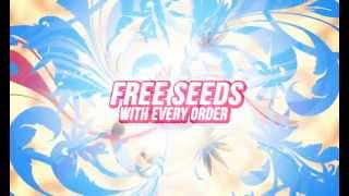 The Vault Cannabis Seeds Video Promo 2014