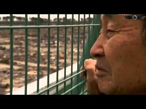 Мегаземетресение: моментът, в който Япония се разтресе