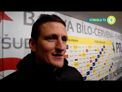 Rozhovory po utkání na Slavii (9.2.2019)