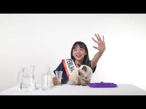 download lagu Azizi Asadel (Academy Class A) - Pemilihan Member Single Ke-20 JKT48 gratis