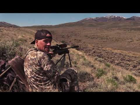 Coyote Hunting - HEADSHOTS - Coyote Assassins Episode 34