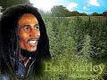 Generation Bob- Rita Marley [video]