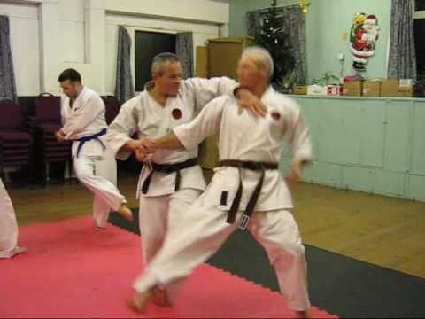 #7 Okinawan karate Traditional Okinawan Goju-Ryu kata based techniques Image 1