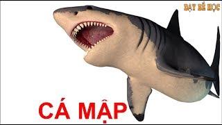 Dạy bé học con vật | Dạy bé nhận biết sinh vật biển nhanh nhất | Bài 319