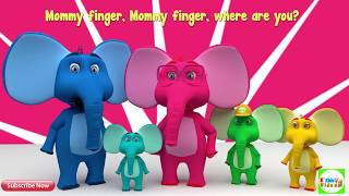 #Daddyfinger  Daddy finger: elephant family and other animal families
