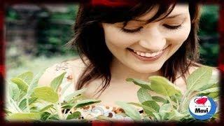 Salvia planta medicinal con grandes propiedades curativas - Para que sirve la salvia