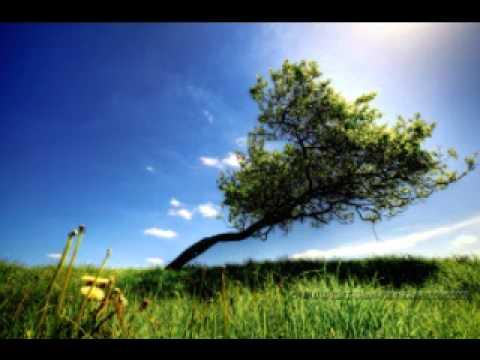 Ezginin Gunlugu - Mutlu Olmak Varken