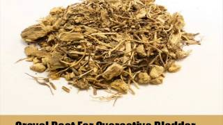 9 Herbal Remedies For Overactive Bladder