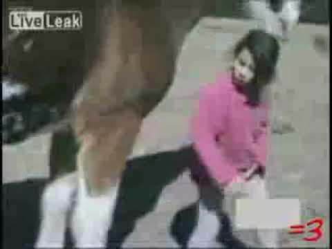 Girl Horses Horse Bites Girl's Head