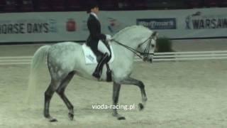 Katarzyna Milczarek i Ekwador - Warsaw Horse Days - 26.03.2011