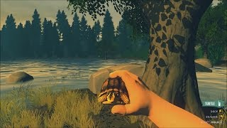 Firewatch: how to find the pet turtle