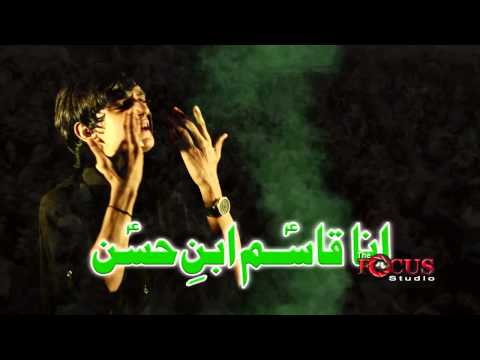 Ana Qasim Ibne Hassan (a.s) - Taha Mehdi Noha Must Watch video