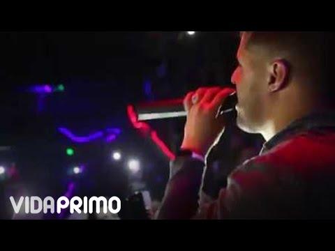 Gotay El Autentiko – Chile (Live) (2016) videos