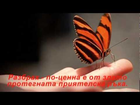 ВЪРВЯ ПО ОСТРИЕТО НА ЖИВОТА - / СТИХОВЕ- SAS-СЕЛВЕР