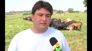 TV do Berro - Nutrição de ovinos com cevada - 25 17 04 07