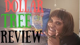 Poore Brothers Salt & Vinegar Chips Dollar Tree Review 2018