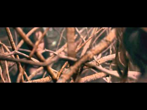 Evil Dead (2013) - Tree Rape Scene video