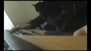 Cat Massage - cute and funny cat giving sensual massage