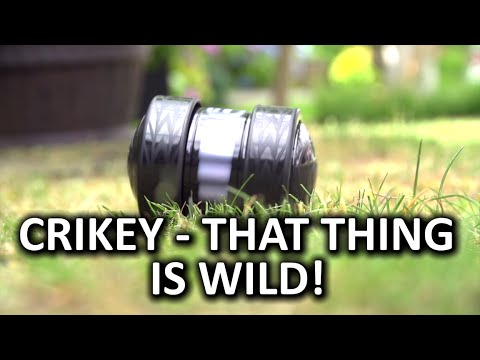 Wild Animal Wrangling & Racing - Sphero Ollie