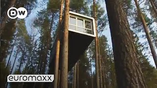 Designer Tree Hotel in Sweden | euromaxx