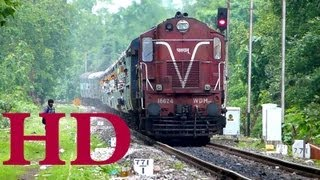 PATRATU WDM3A SCARES AWAY DOG , HAULS VALSAD MUZAFFARPUR SHRAMIK EXPRESS THROUGH BAGRATAWA .
