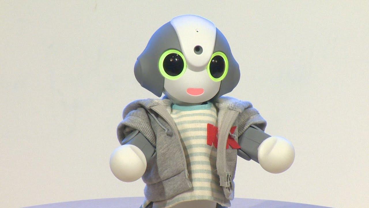 好みや感覚を理解するロボット