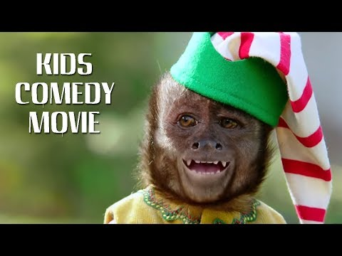 Hollywood Movies In Hindi –The Fast And The Furriest Monkey Up -English Comedy Movie Dubbed In Hindi