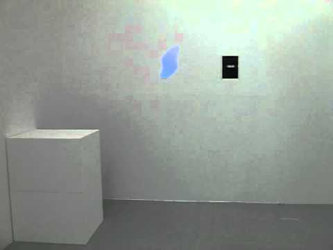 Trisha Donnelly At Air De Paris Gallery October 2010 1 video