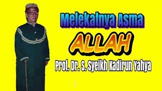Prof. Dr. H. S.S. Kadirun Yahya MA. M.Sc