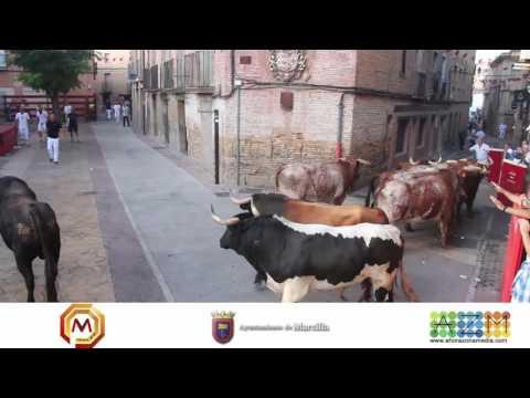 Tv Marcilla - 28/08/2016 - Encierro de Toros Ganaderia Toro Pasion