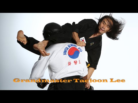 7th Dan Master Taejoon Lee Action Reel - Hwa Rang Do® Image 1