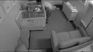 Adorable time-lapse of twin toddlers skipping sleep to play