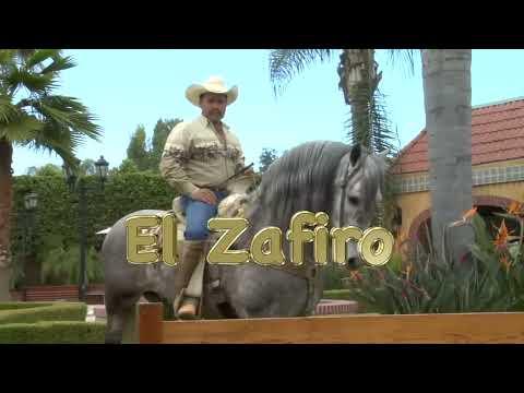 Vicente Fernandez -El Alazan y El Rosillo- www.DavidySusCaballos.com - El Zafiro
