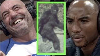 The Reason Charlamagne Believes in Bigfoot | Joe Rogan